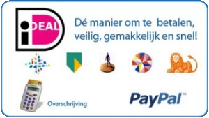 iDeal, Paypal